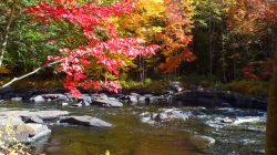 fall on the oxtongue river, ontario, canada, pic 2