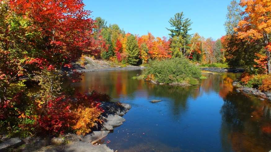 Fall on the Oxtongue River
